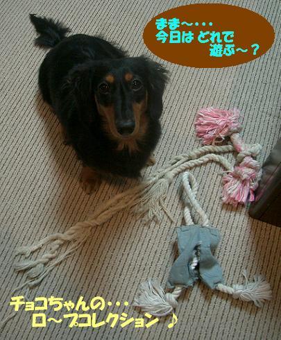 Cimg6860_rope