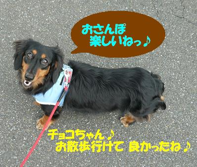 P1000071_f