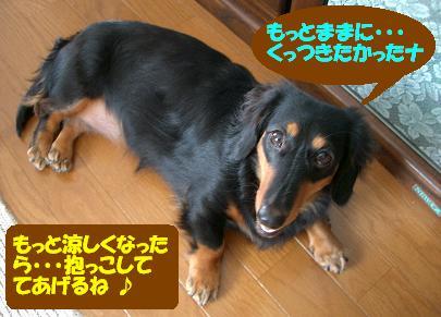 Cimg7469_a