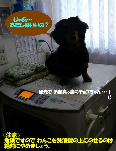 P1020105_3_2