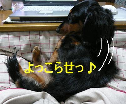 P1040723_e_2