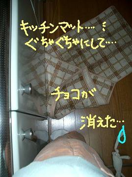 Cimg1749_dai4_1