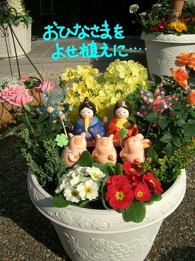 Cimg1785_yosehina1