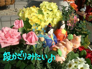 Cimg1791_yose3