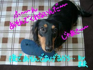 Cimg1846_otenba22_1
