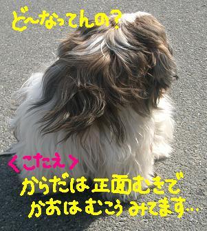Cimg2701_hurimuki