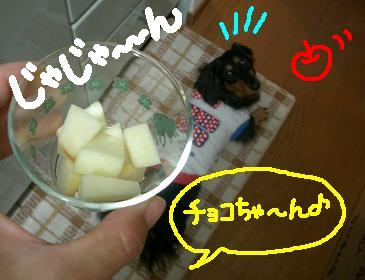 Cimg4202_3_1