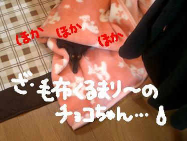 Cimg4915_1_2