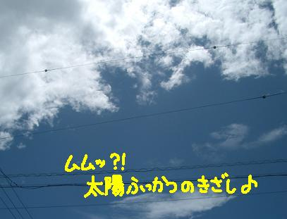 Cimg5134_s