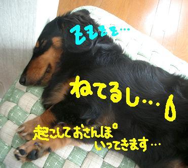 Cimg6014_a