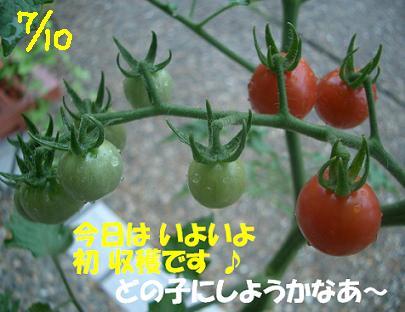 Cimg6258_710