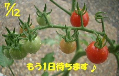Cimg6277_a